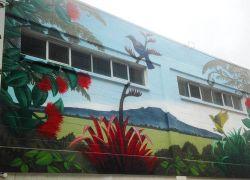 NZ-art-mural