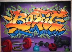 NZ-gym-mural