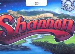 Shannon-NZ-mural
