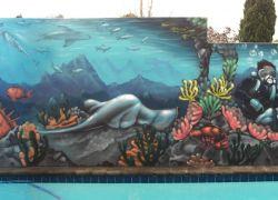 NZ reef