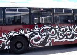 Taupo school bus
