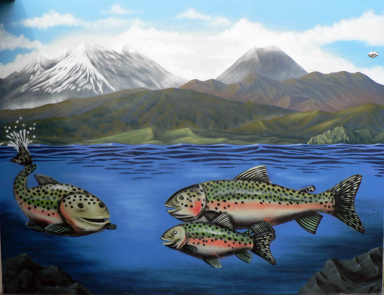 Taupo trout