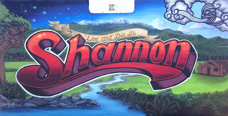 Shannon NZ mural